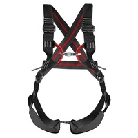 Mountain Mama Pregnancy Harness