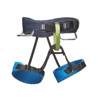 Momentum Kids Harness